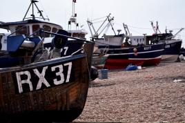 Row Row Row of Boats