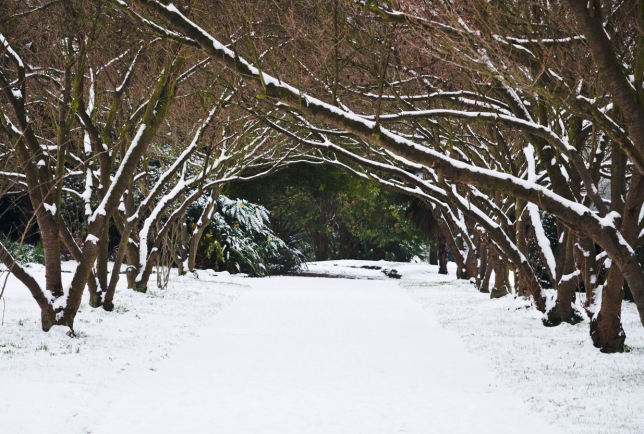 Winter gateway